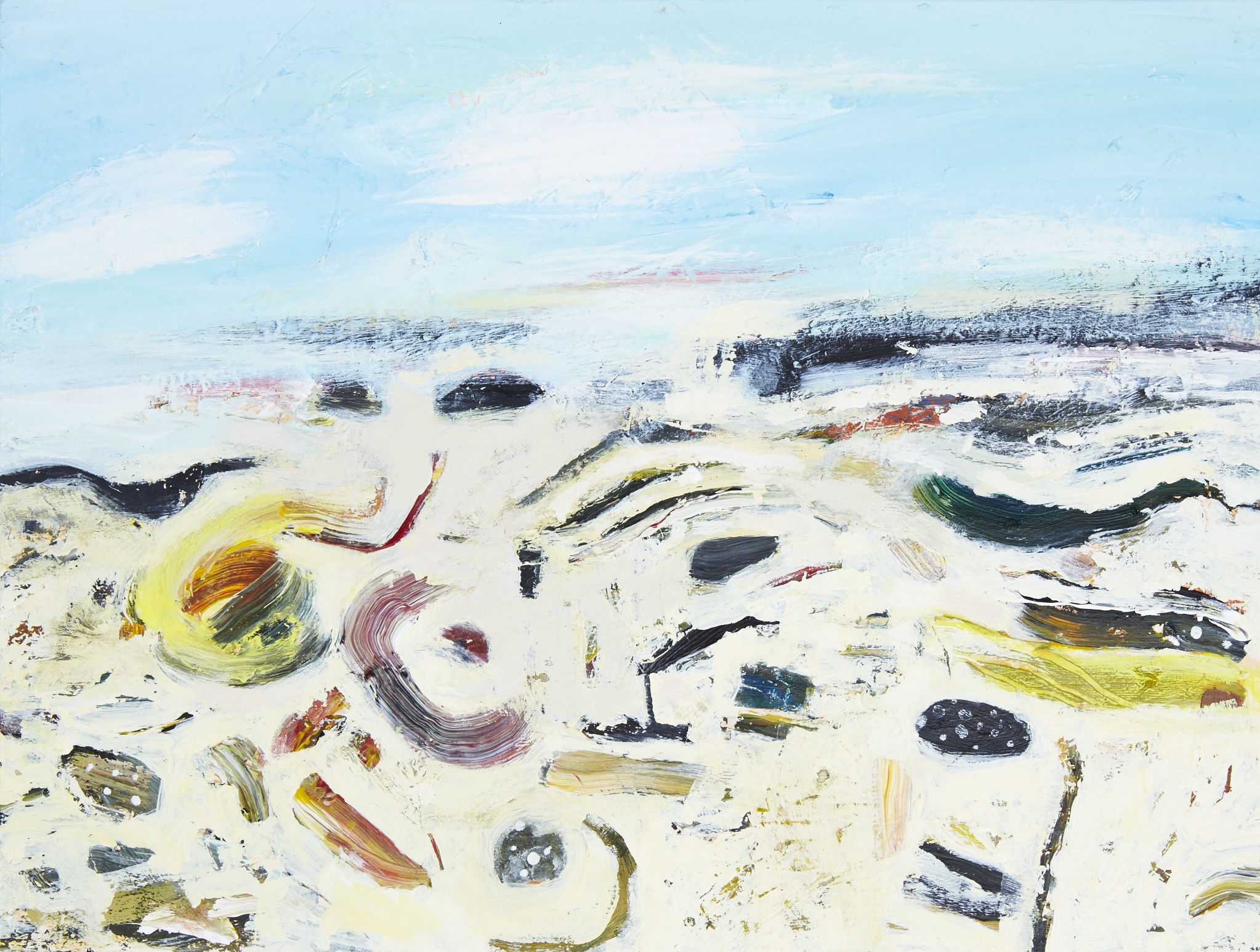 Beachscape (Small) - Coille Ghille - 300dpi 50%.jpg
