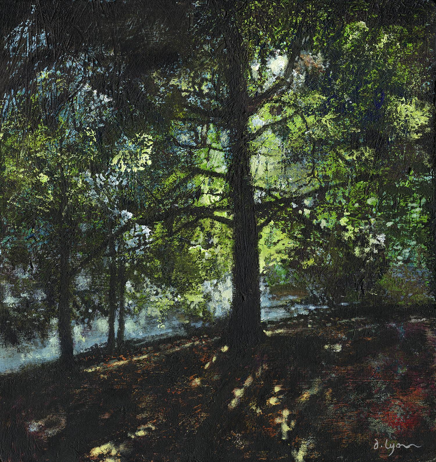 Sunlight on the Lake