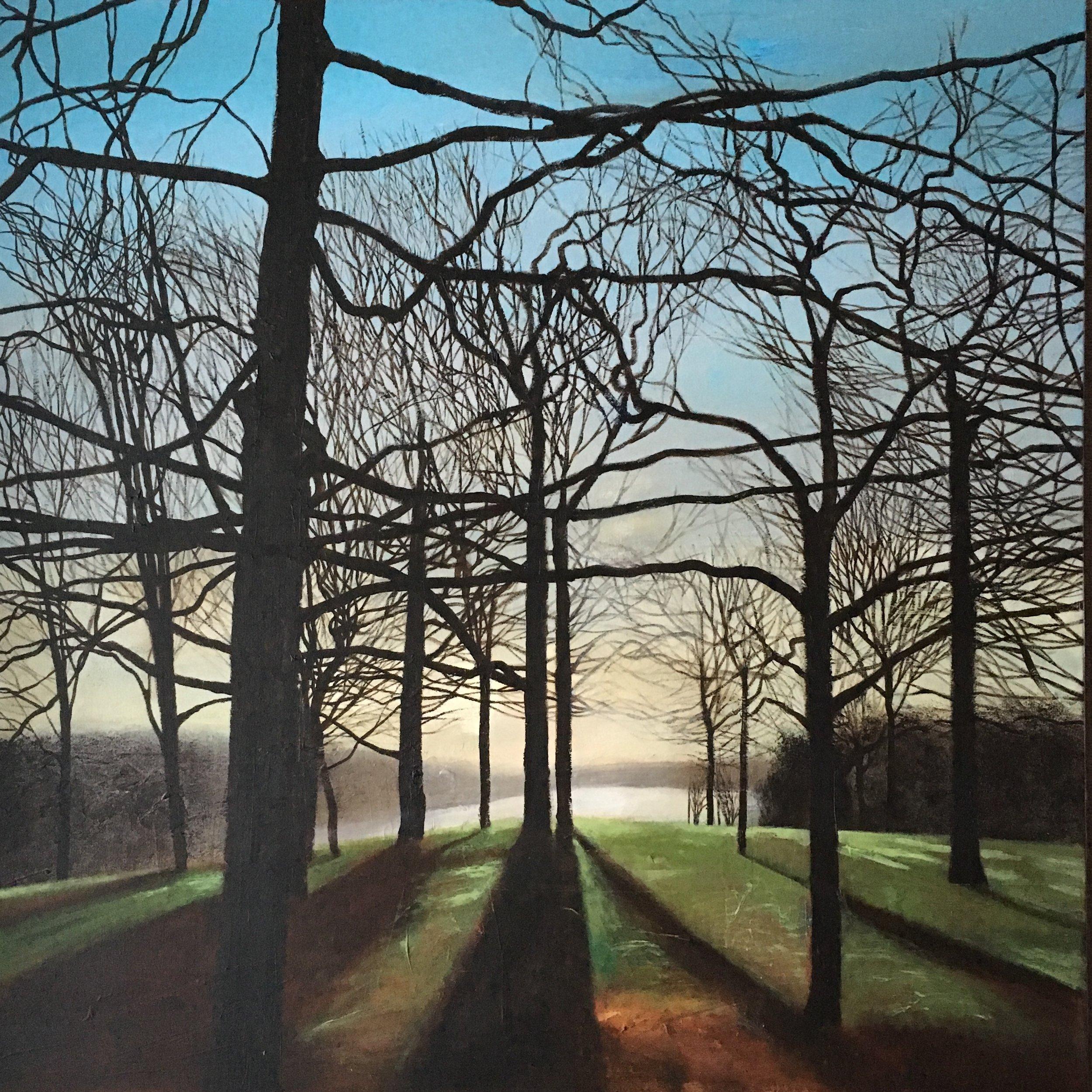 Through The Trees to Waterloo Lake