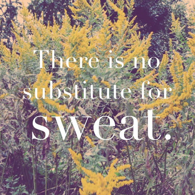 There is no substitute for sweat | Swell Mama