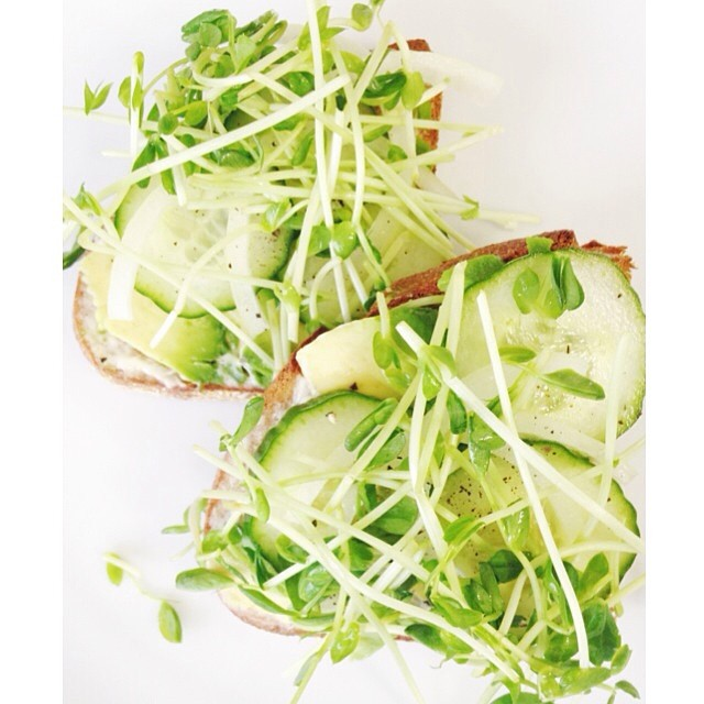 Green veggie sandwich or glorified avocado toast. Either way it's too too good. Whole wheat sourdough bread, veganaise, avocado, paper thin cucumber slices, sweet onion, and pea shoots with balsamic vinegar and black pepper sprinkled on top.