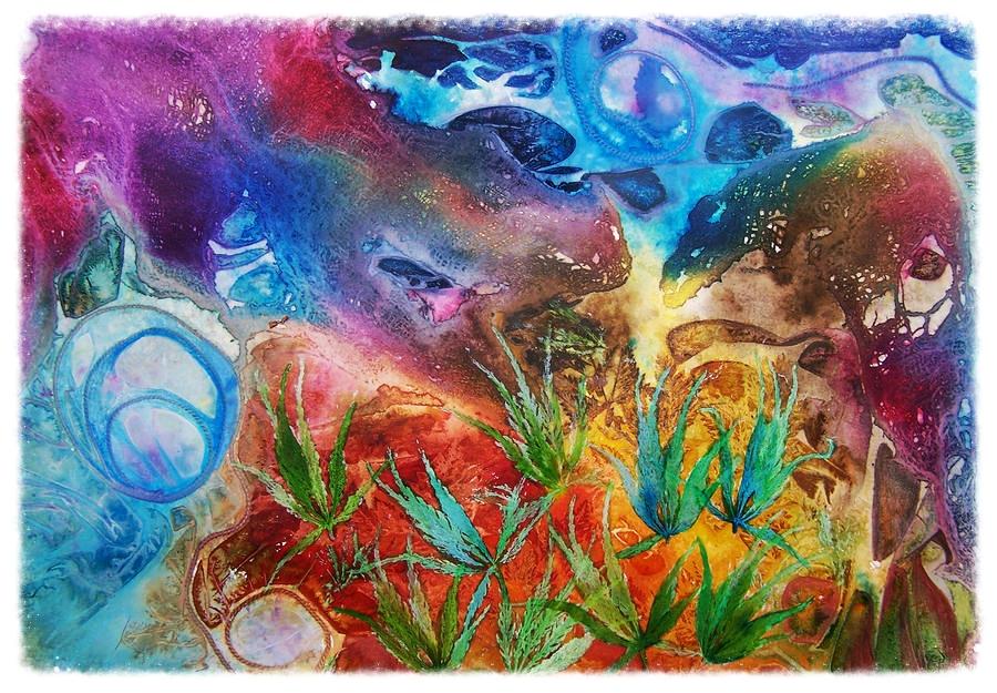mysteries-of-the-ocean-vijay-sharon-govender.jpg
