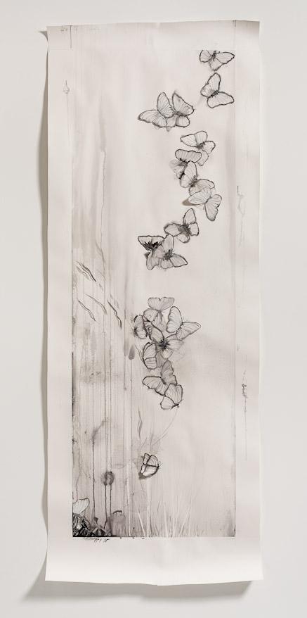 judy's butterflies at first light '13