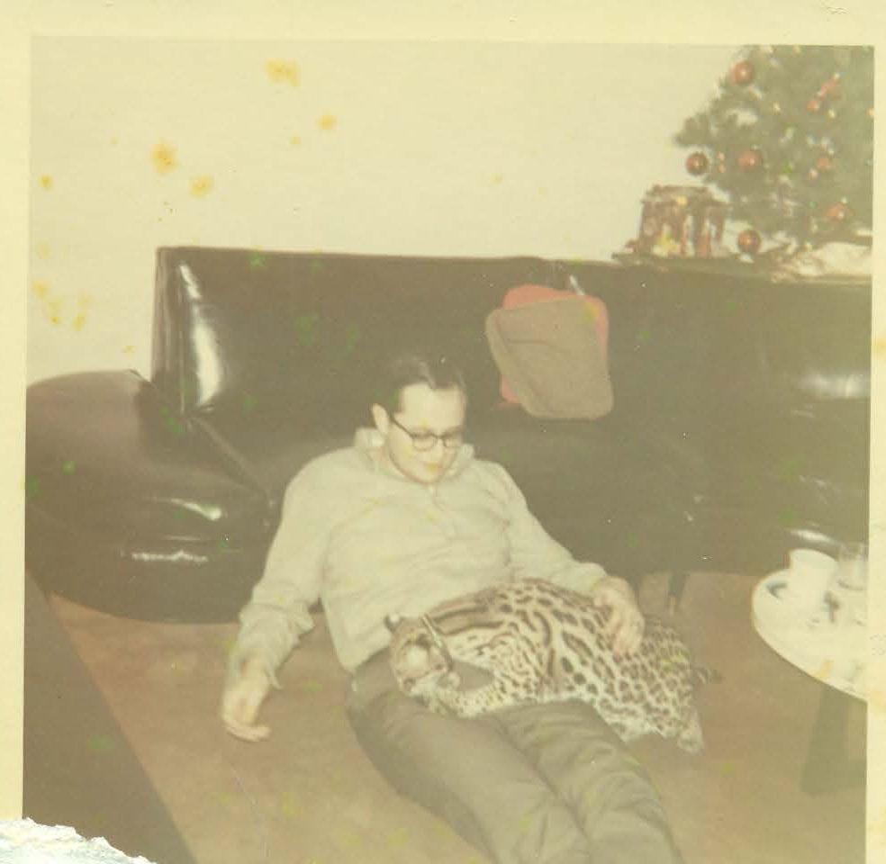 Dad_kitty.jpg