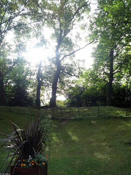 Helt vanlig idyllisk Dublinsk park.
