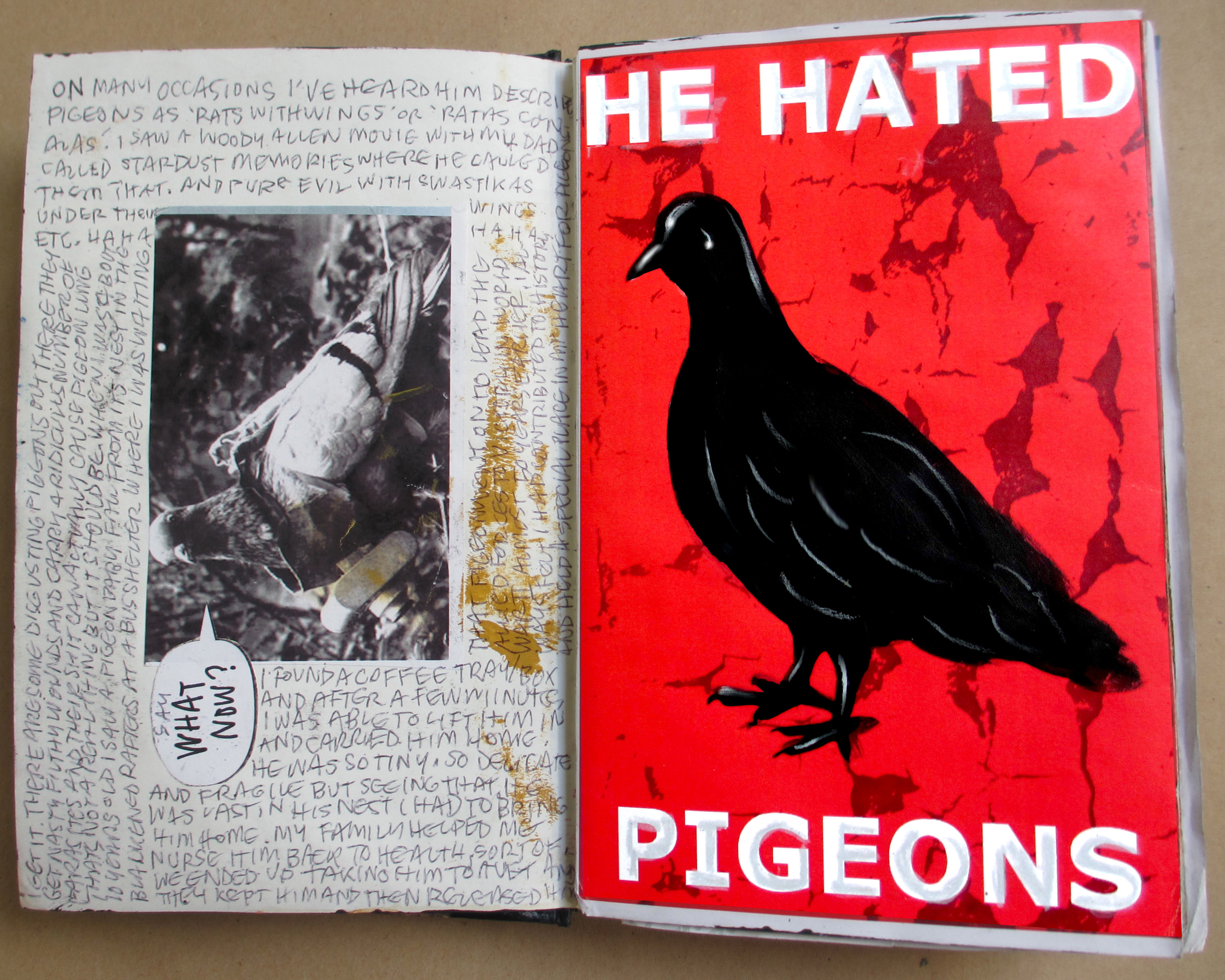 'He Hated Pigeons' 2015