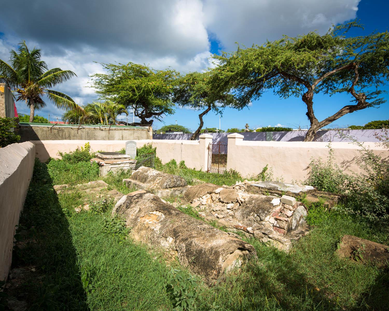 Aruba_2013_00079.jpg