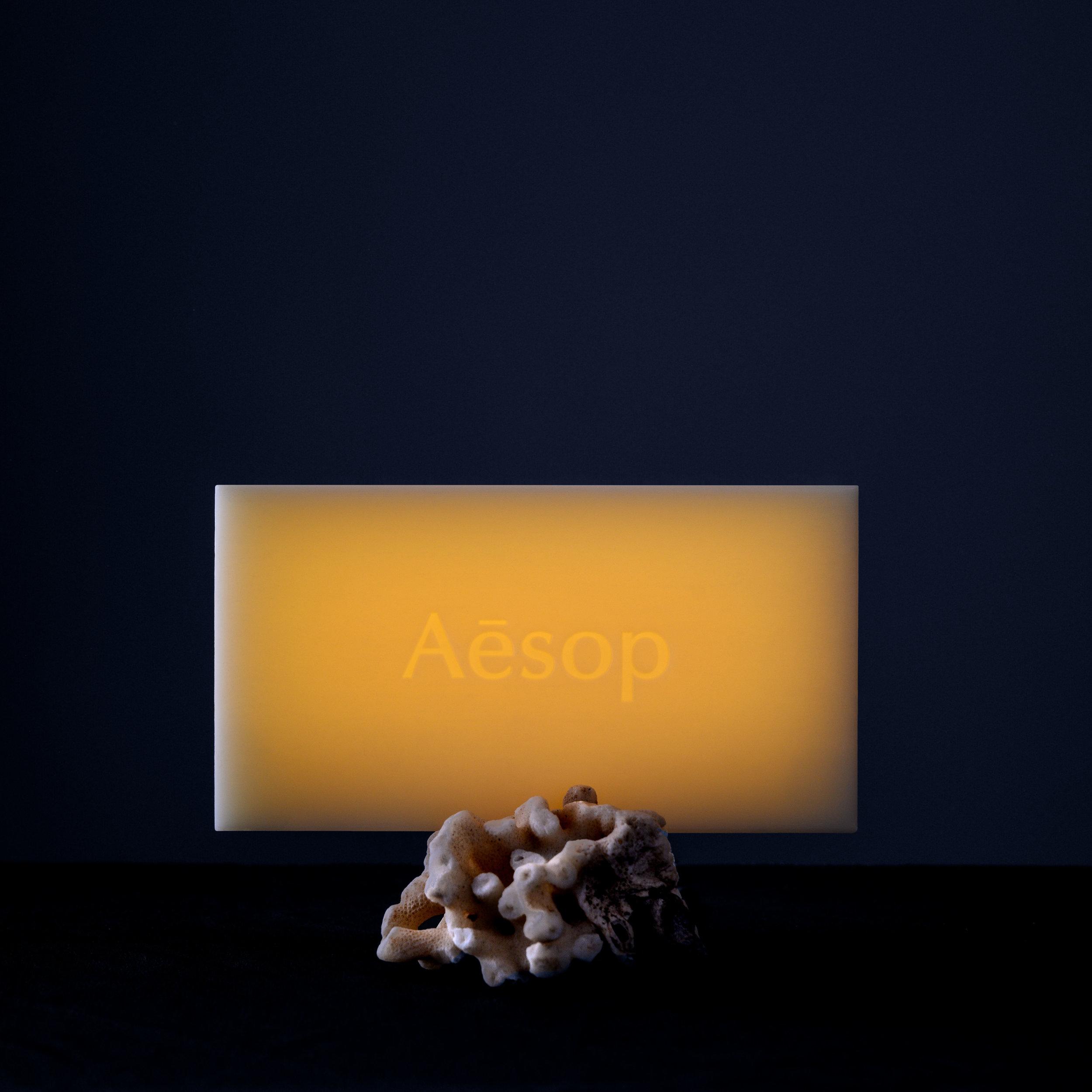 Aesop_Nuit©Edouard Auffray-1.JPG