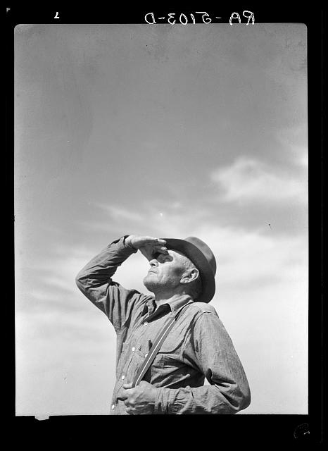 a Farmer studies the sky, perhaps searching for rainclouds?  Men wore suspenders, they wore hats, they worked hard and were proud... Circa 1930