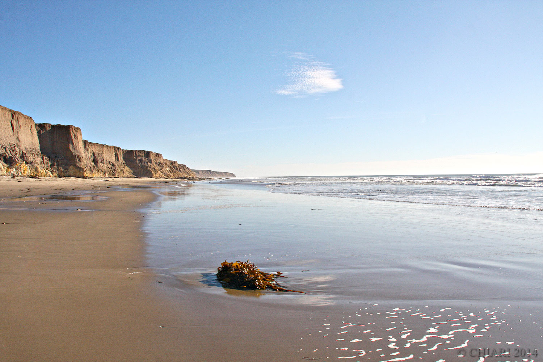 California-Untouched-CHIARIstyle.jpg
