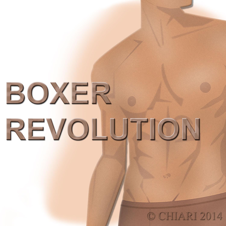Boxer Revolution CHIARIstyle 14