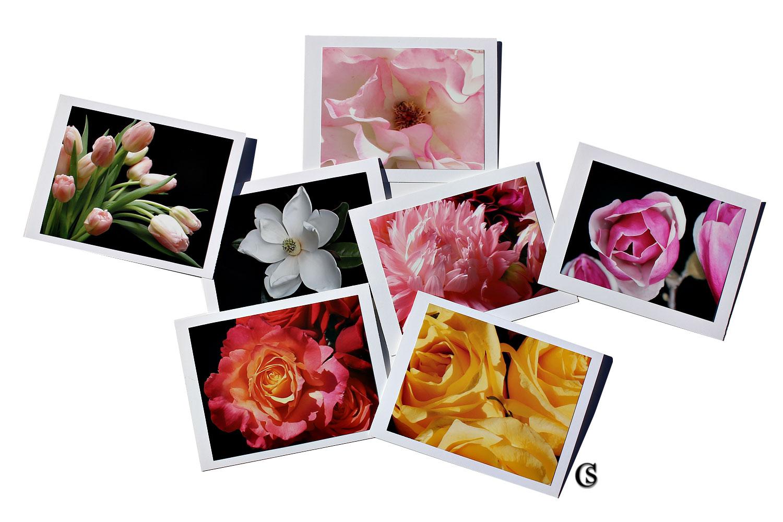 shop the floral garden CHIARIstyle