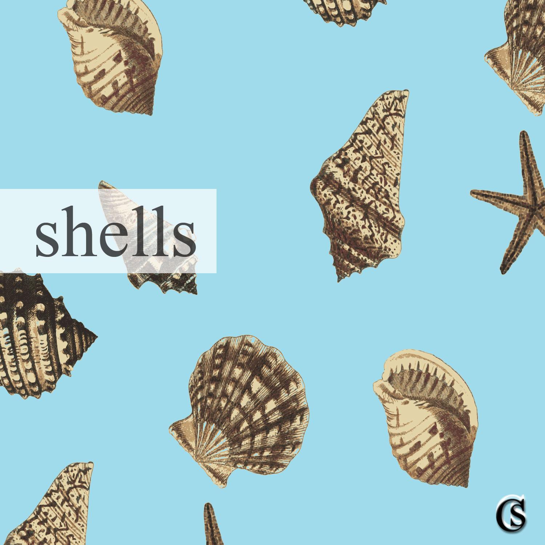 Print-Shell-CHIARIstyle-15.jpg