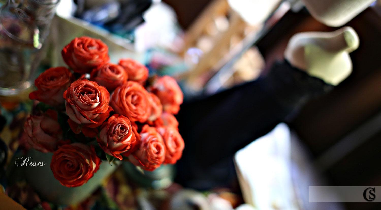 roses-in-the-sugar-shack-chiaristyle.jpg