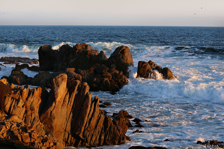 Montery Coastline CHIARIstyle