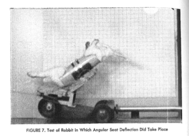 "A rabbit undergoing a ""whiplash"" simulation at Tulane. In their article based on these studies, the Tulane researchers concluded, probably unhelpfully, ""The historical premise that the neck of the rabbit is fragile appears to be in error."""