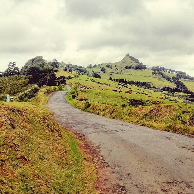 Walking in the hills.  St helena
