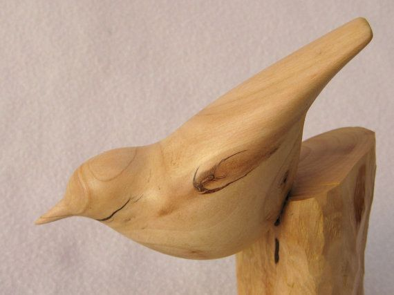 Perhaps the bird looked something like this?...