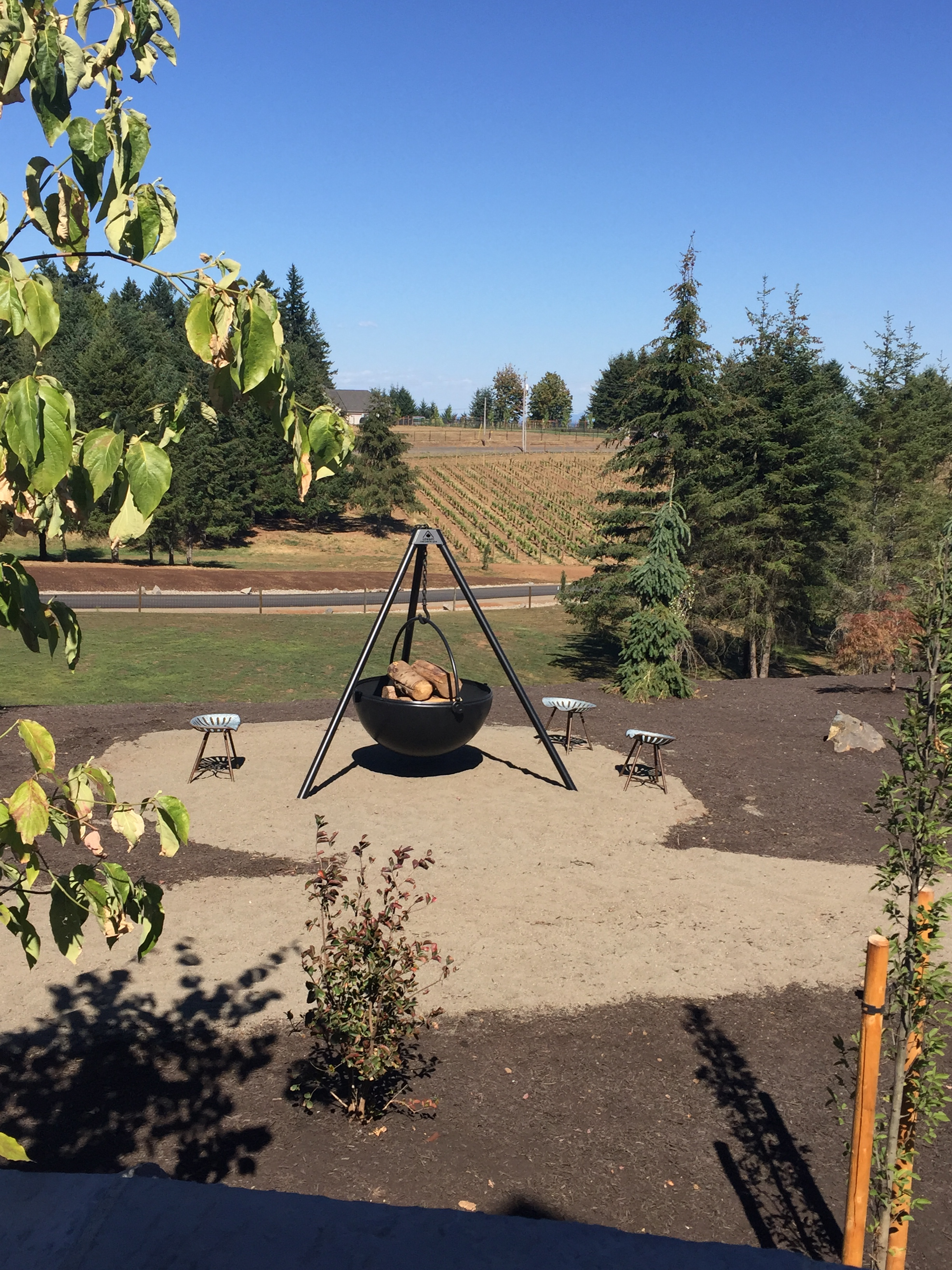 Another fire pit, overlooking the vineyard...