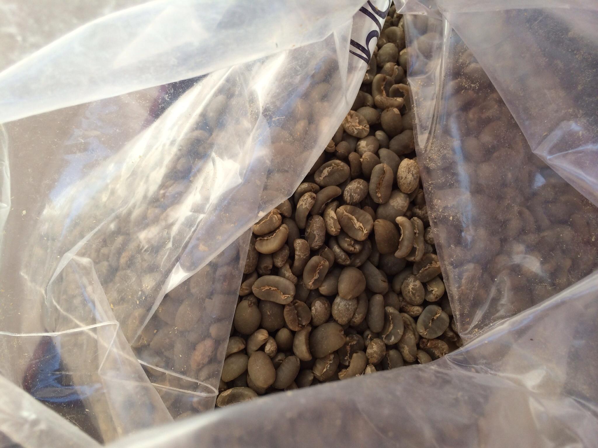 Sumatra green beans