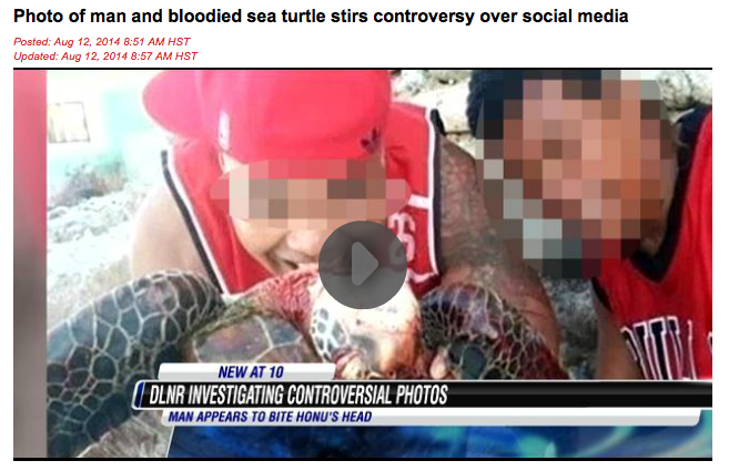 """Photo of man and bloodied sea turtle stirs controversy over social media"". HNN"