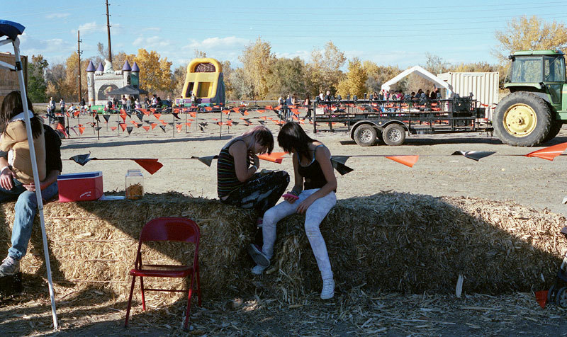 Teenagers at the pumpkin patch.     Thornton, CO 2013