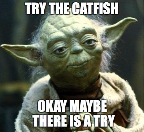 yodatrythecatfish.jpg