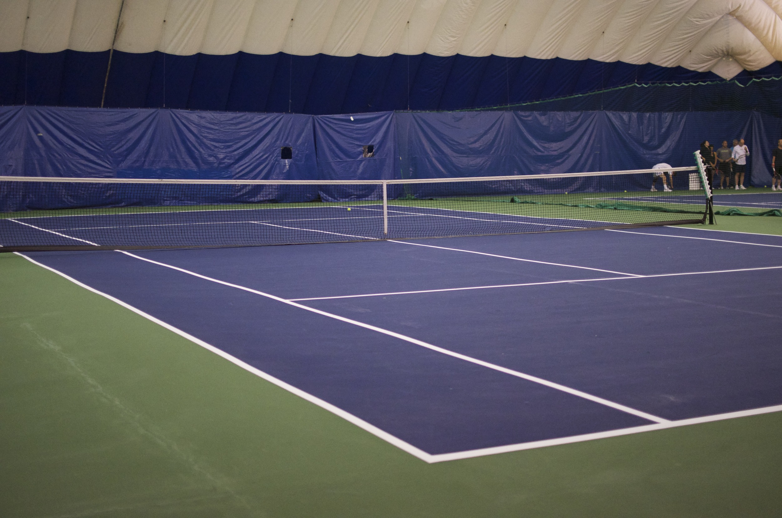 ALLEY POND COURTS