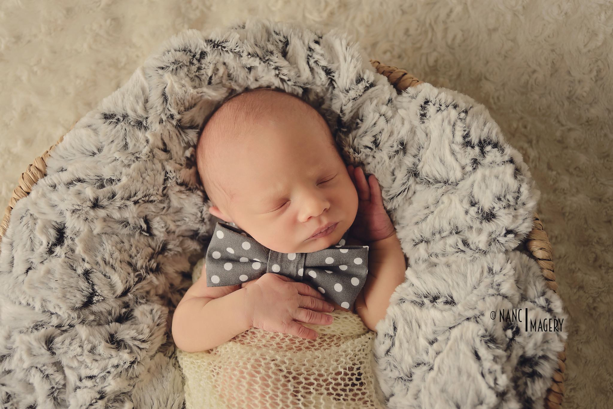 newborn with a bowtie