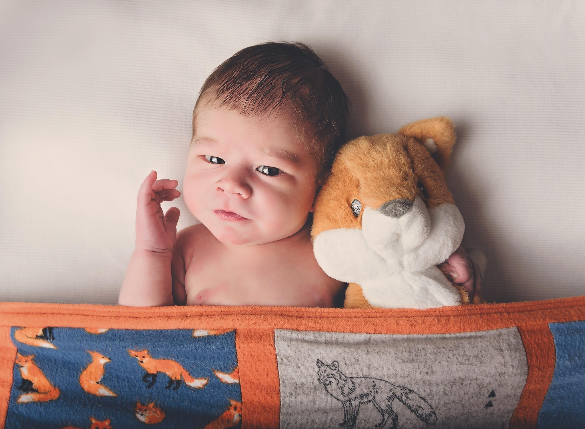 Fox Newborn baby boy