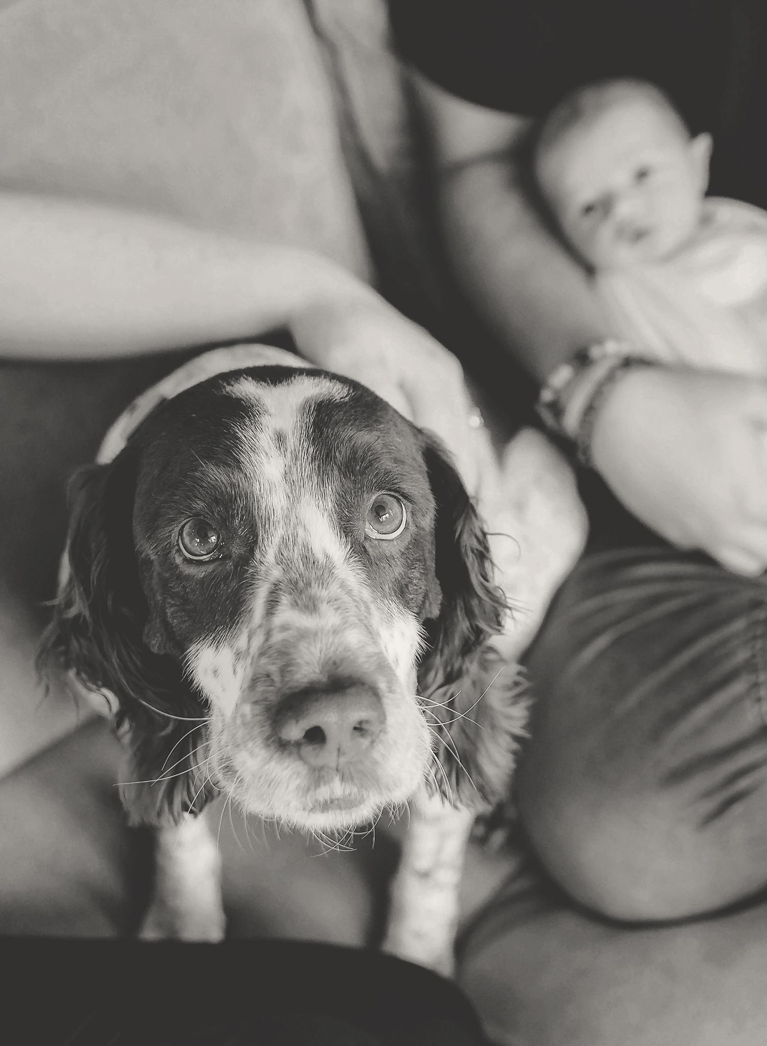documentary newborn portland oregon photographer (30).jpg