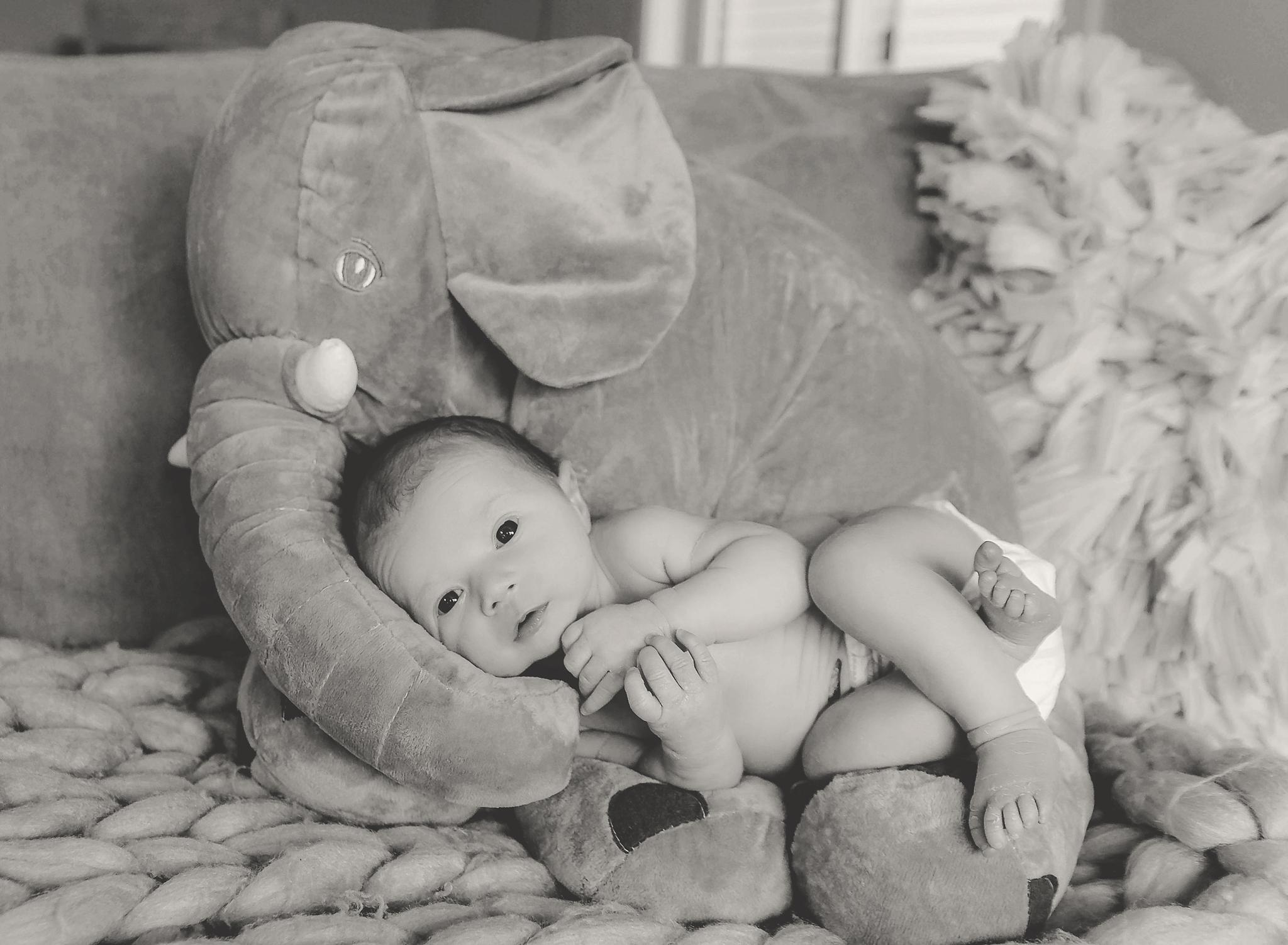documentary newborn portland oregon photographer (49).jpg