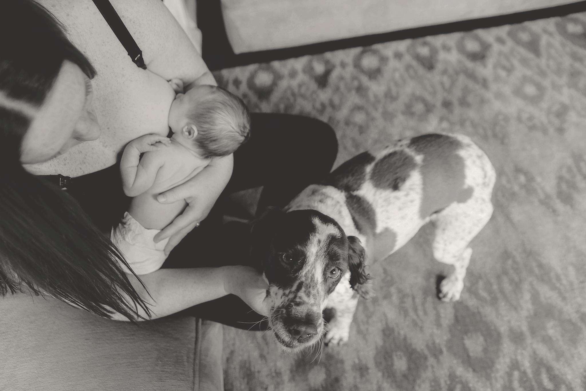 documentary newborn portland oregon photographer (72).jpg