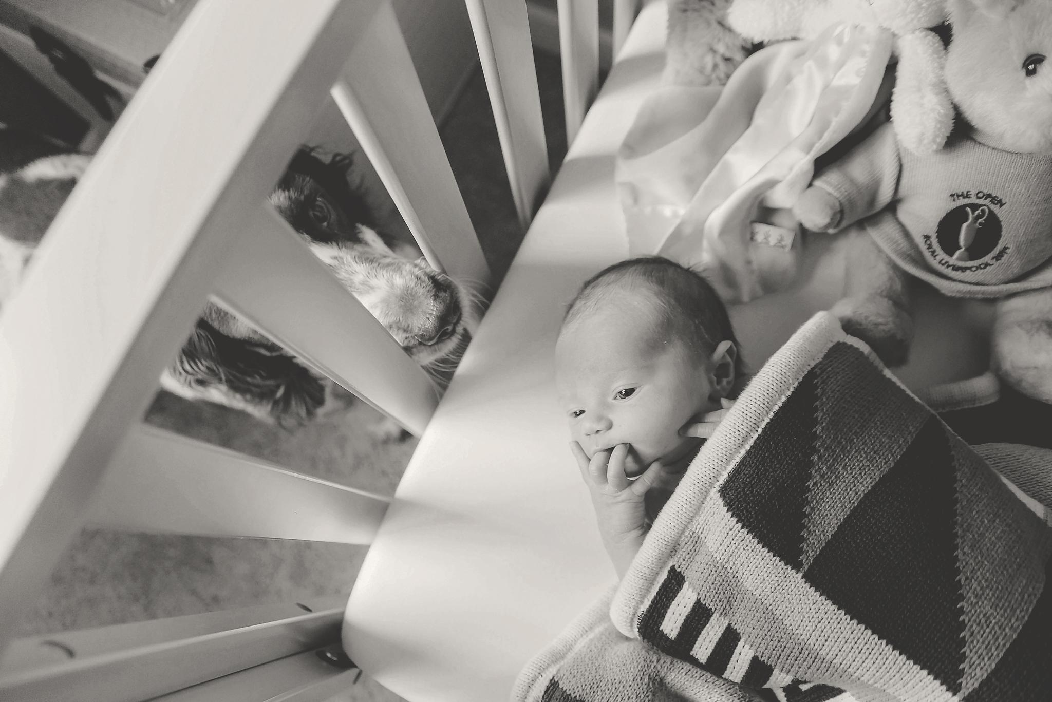 documentary newborn portland oregon photographer (97).jpg