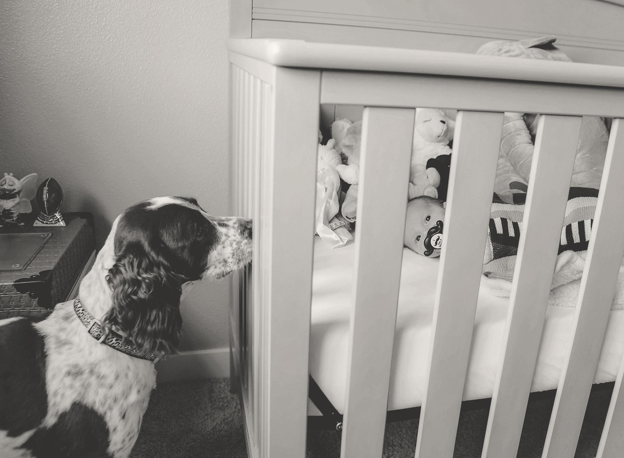 documentary newborn portland oregon photographer (98).jpg