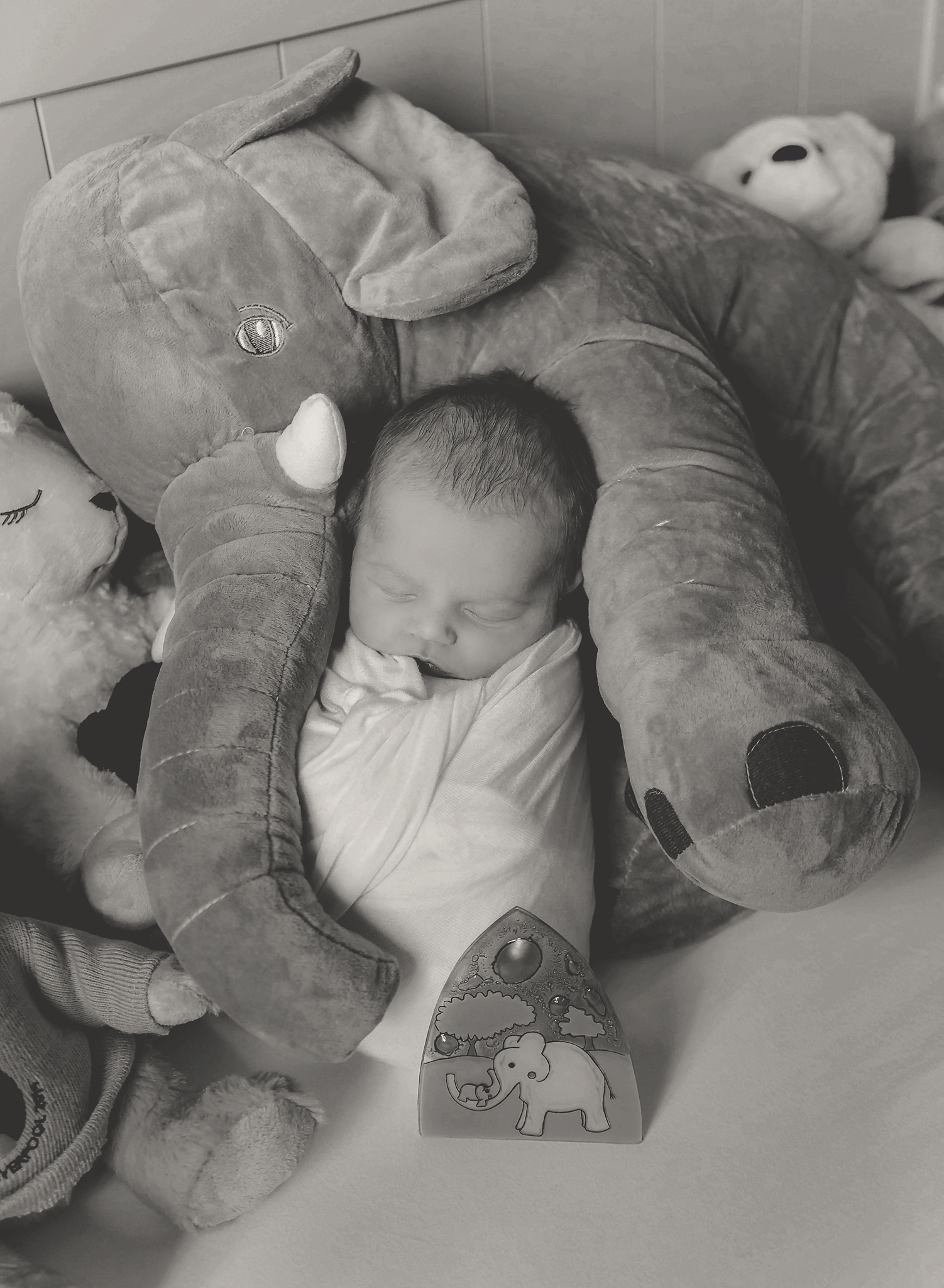documentary newborn portland oregon photographer (105).jpg