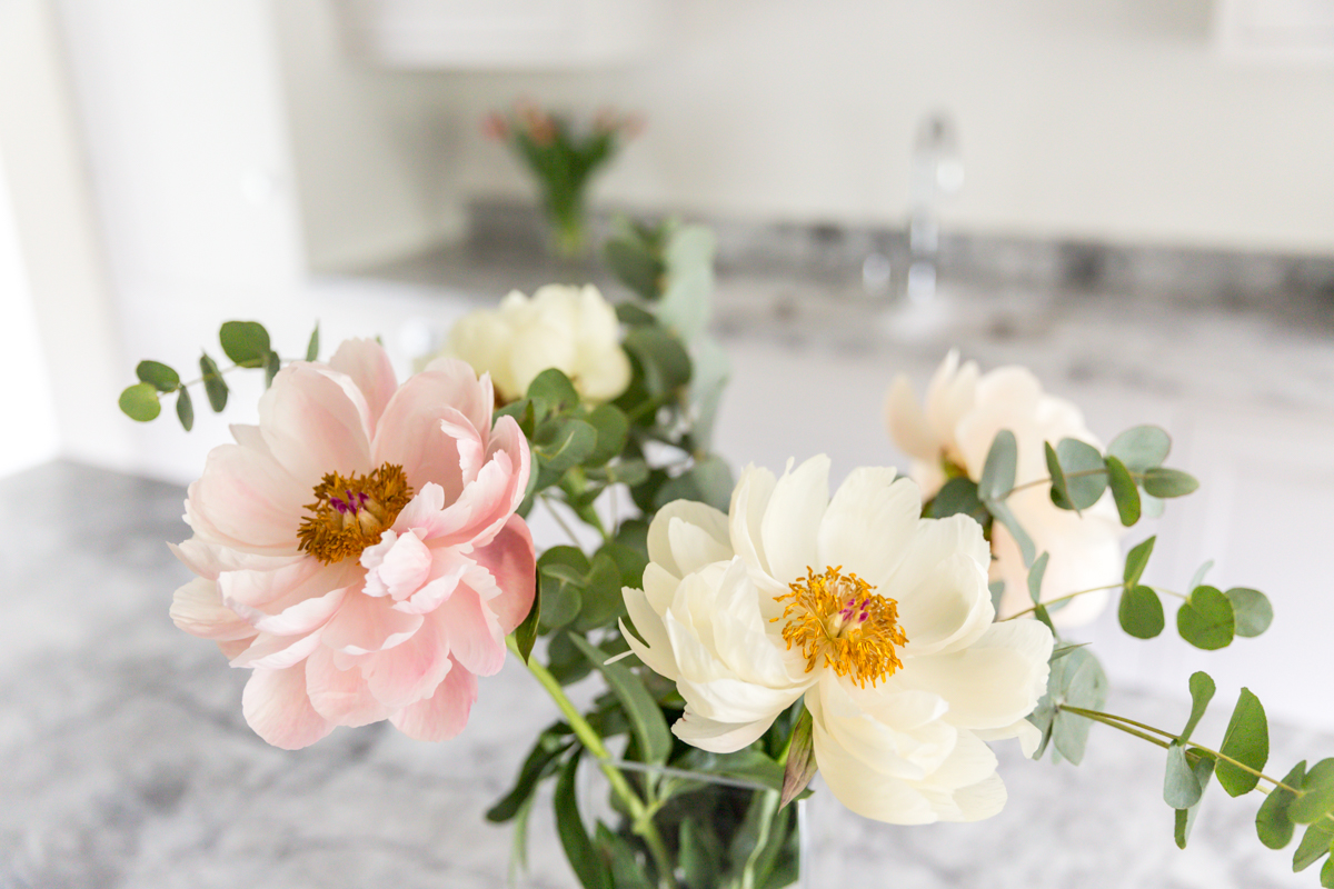 Claire Williams Photography (115 of 117).jpg