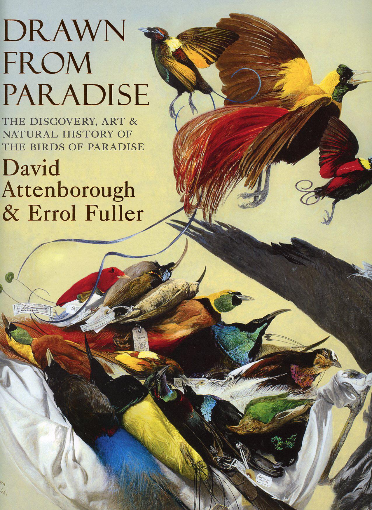 Drawn From Paradise.  David Attenborough & Errol Fuller.