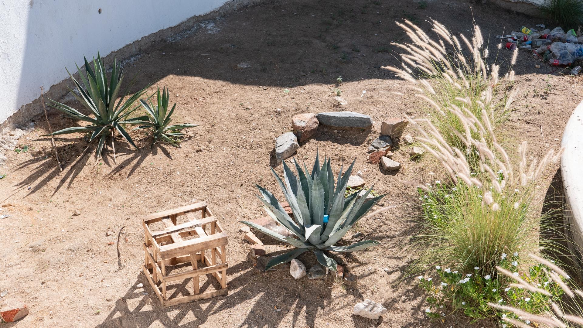 cabo-san-lucas-objects-sand.jpg