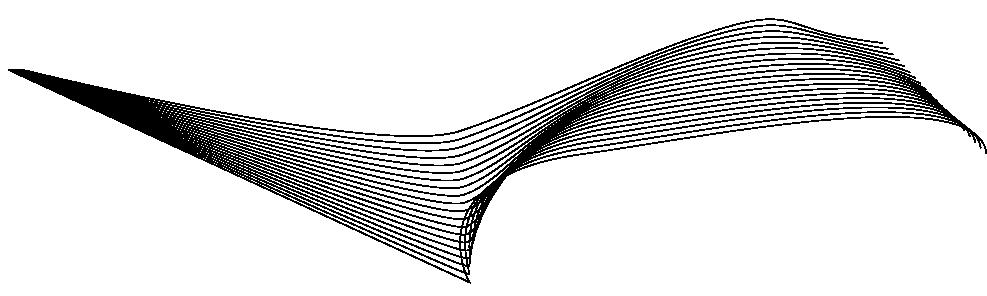 section-break-line-art-1.png