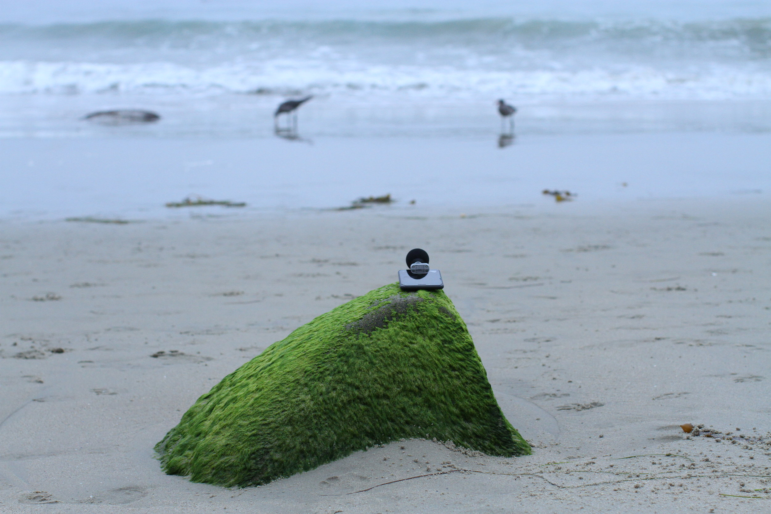 Morning Waves at Laguna Beach