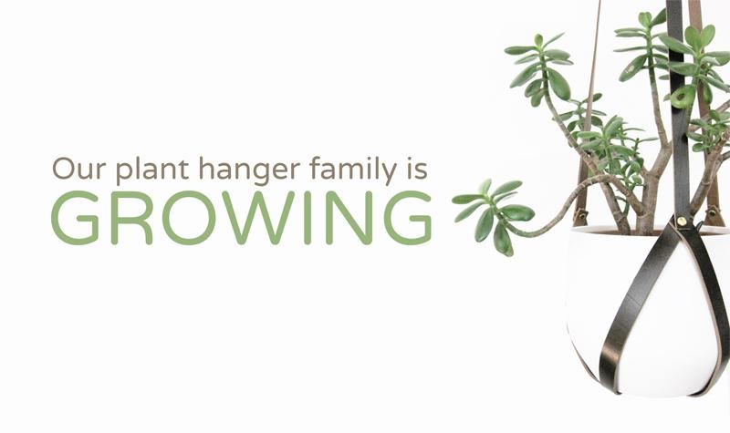 plant-hanger-banner-text.jpg
