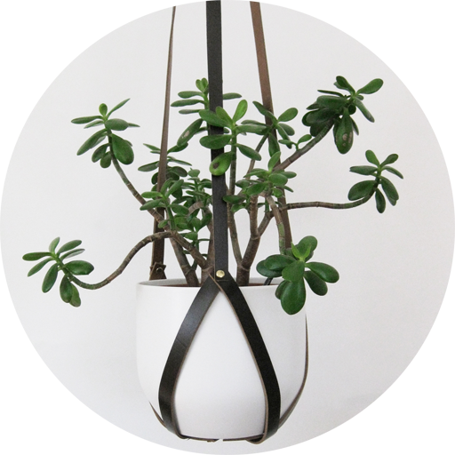 leather-plant-hanger-circle-2.png