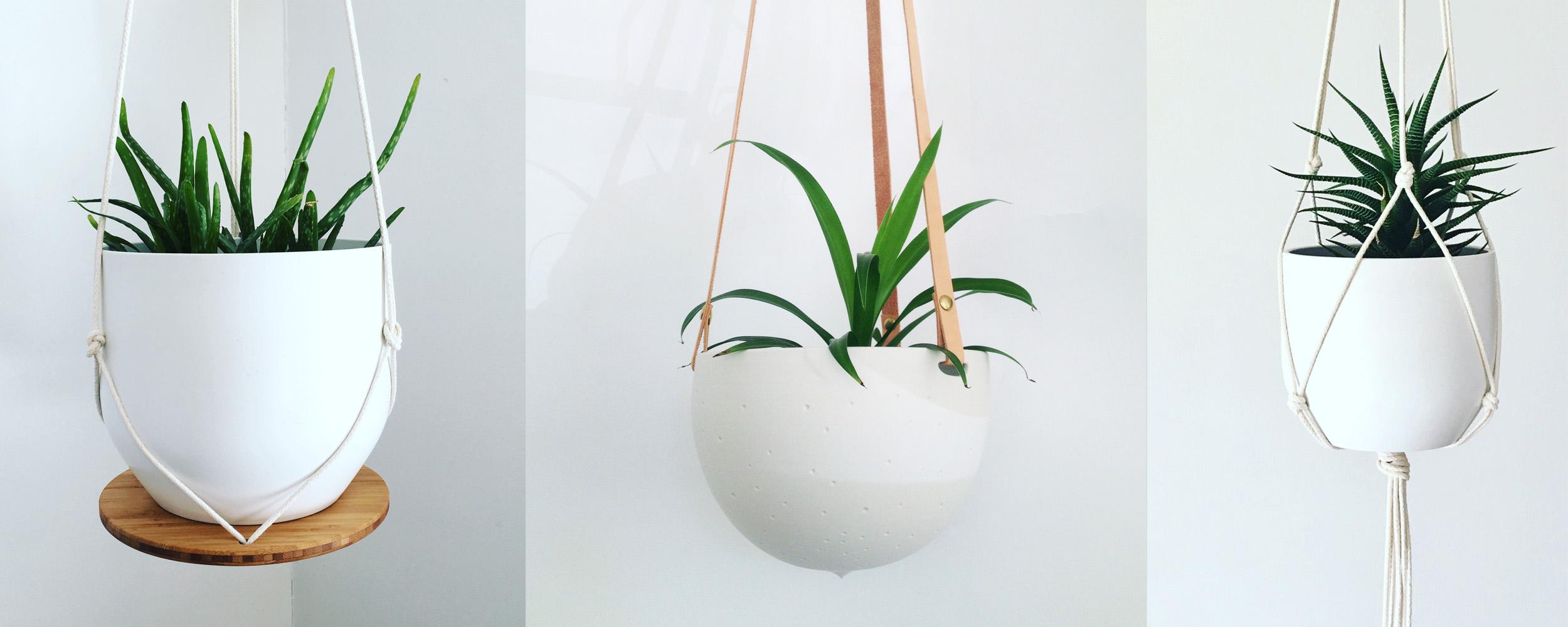 planthangers-2.jpg