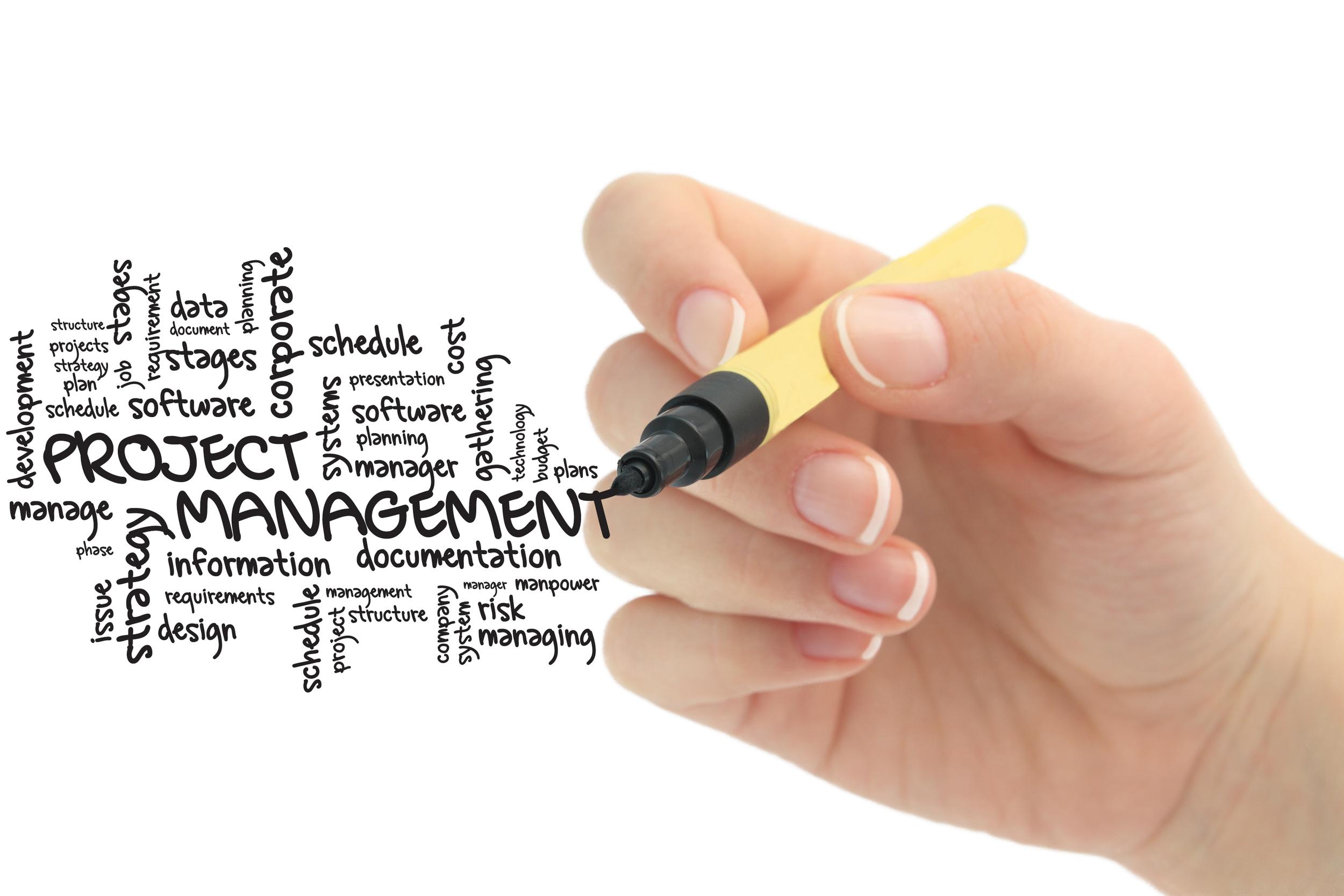 DCFF Website Main - Project-Management-2.jpg