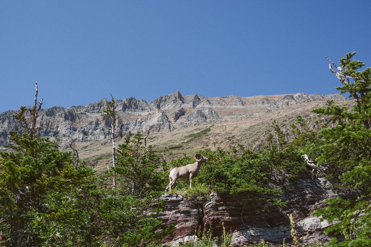 Road Trip 2014-7450.jpg