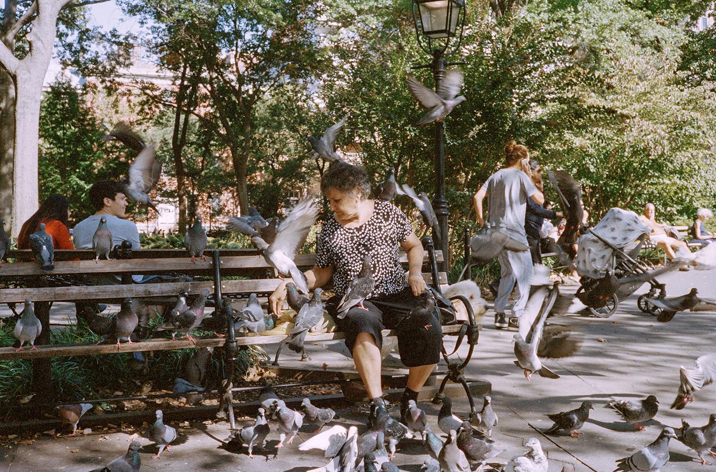 44_F24_Washington Square Park, New York Wanderings 2014.jpg