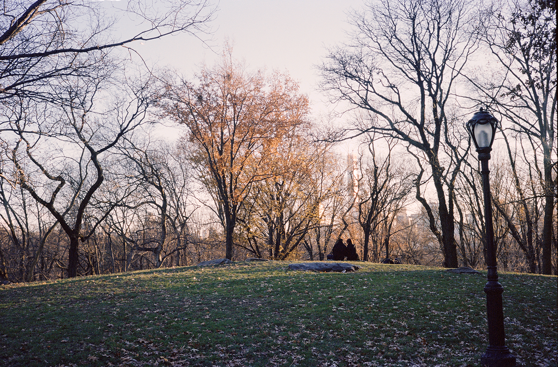 46_F26_Central Park, Wildman Steve, New York Wanderings 2014.jpg