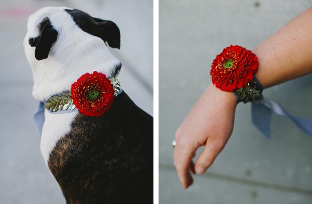1b_dog_bracelet.jpg