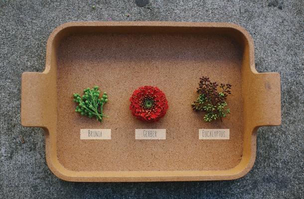 1aMT_Ingredients1-01.jpg